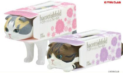 《奇谭俱乐部》「面纸盒中的摺耳猫」第三弹